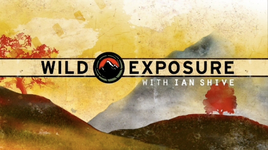 wildexposure